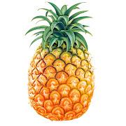 son la naranja