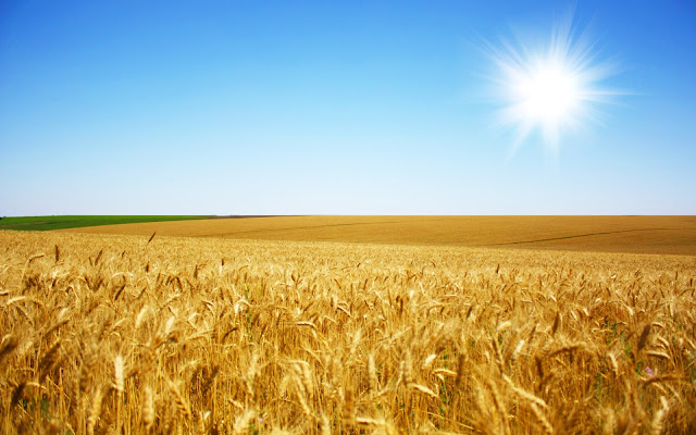 "Beautiful high resolution wallpapers ""Ukrainian flag: the blue sky"
