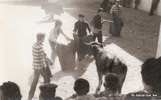 Toros en Candelario Salamanca