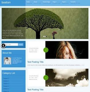 en iyi 10 blogger teması 6