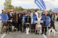 Εθνική Ελλάδος 2010