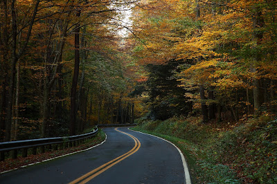 Use These Car Care and Maintenance Tips to Drive Through Fall