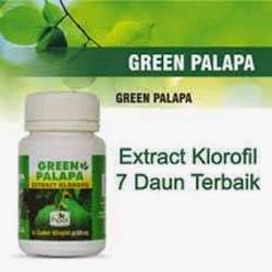 MANFAAT GREEN PALAPA HPAI