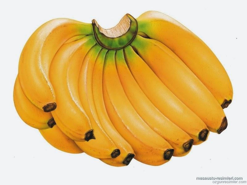 موز و اهمية الموز العلاجية