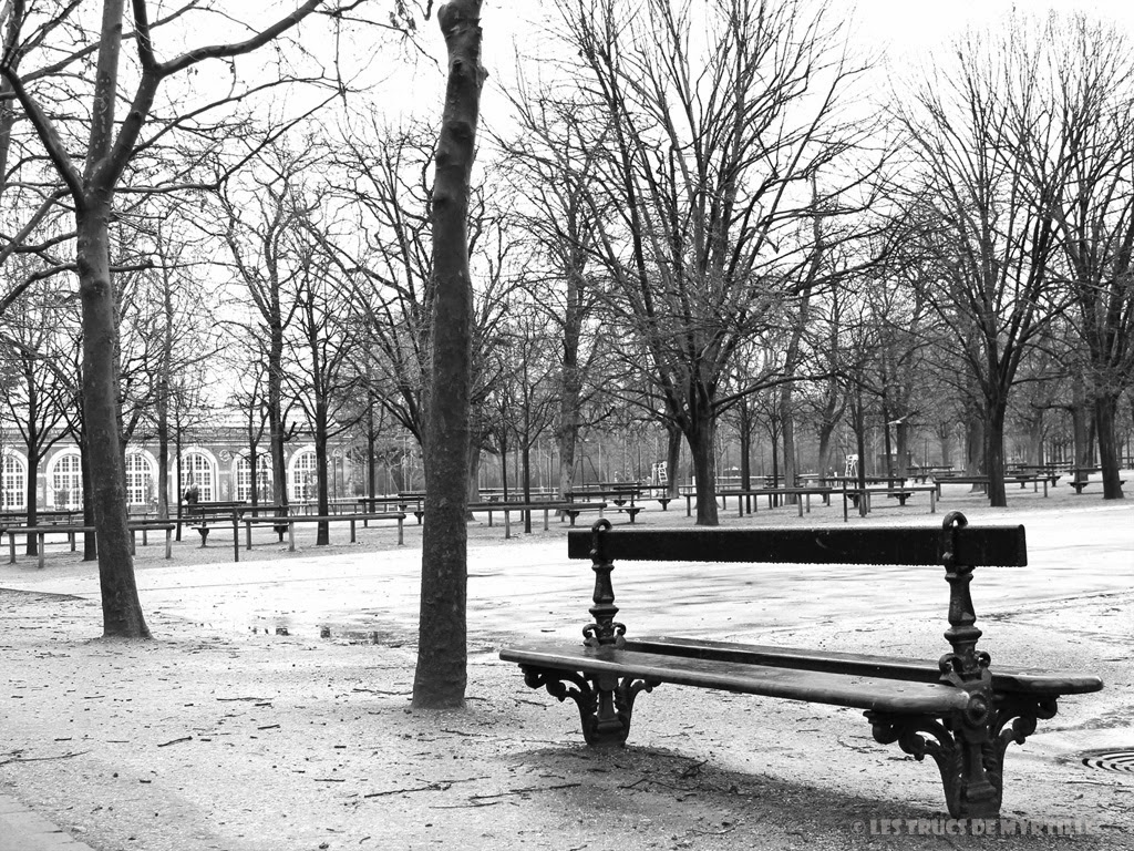 Fond d'écran #3 de FÉVRIER 2014, avec et sans le calendrier du mois - Jardin du Luxembourg (photo janv. 2014)