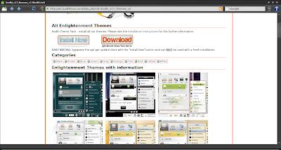 Bodhi Linux theme