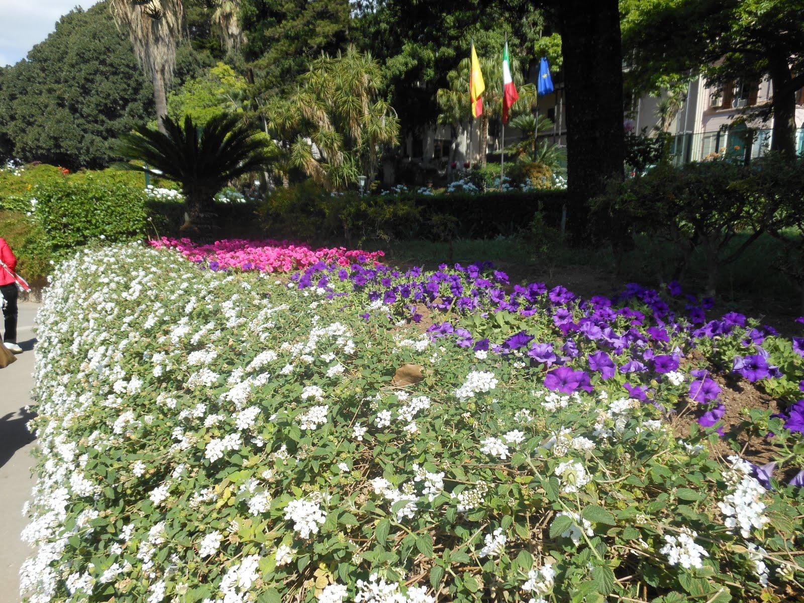 Twolittlebirds un giardino fiorito for Giardino fiorito