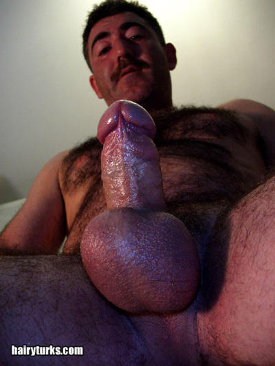 Hairy Bears Blowjob For An Auntie Queen - Spankwirecom
