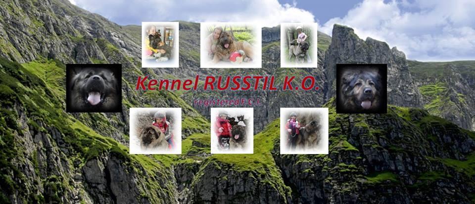 KENNEL RUSSTIL KO