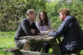 William, Kate and Harry's cause....