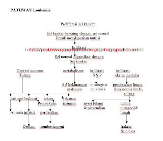 Pathway Leukemia Pathophysiology