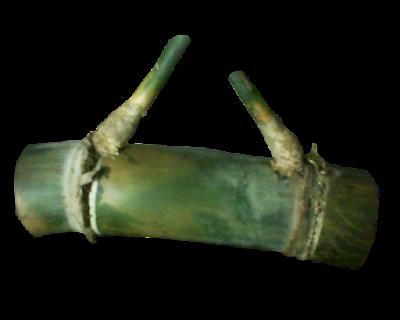 Mitos Bambu Petuk Jimat Untuk Mendatangkan Rezeki