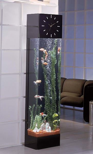 Interior building design ornamental fish aquarium for for Ornamental fish tank