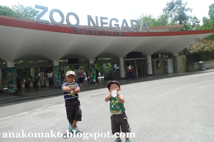 Bila Abang dan Adik ke Zoo Negara