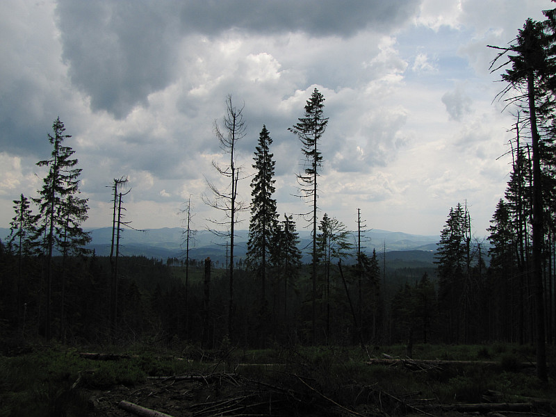 Widok z podejścia na Baranią Górę.