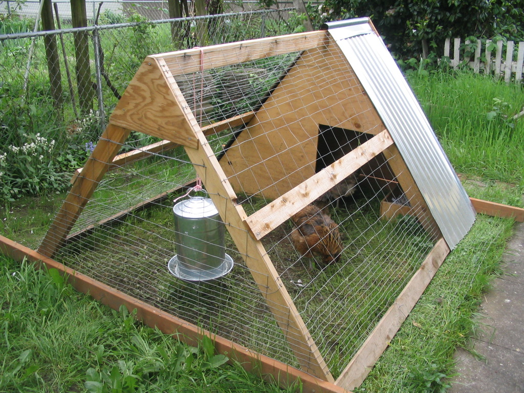 Chicken coop designs 2012 for How to build a chicken hutch
