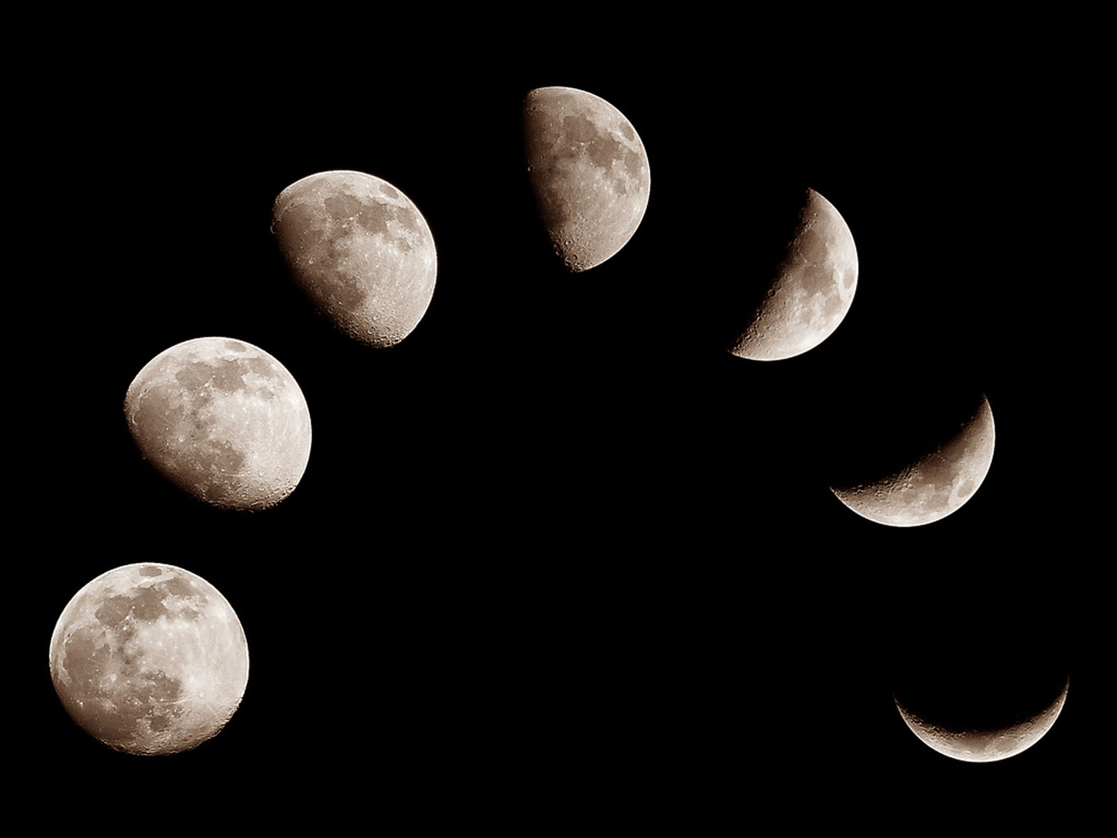 Wallpaper Moon Phases