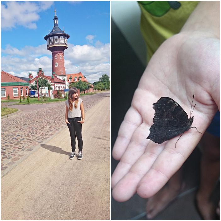 wieża,schwedth,szczecin,blog wnętrzarski,motyl,foto,inspiracje
