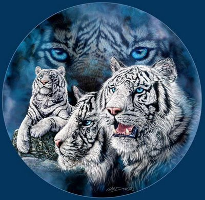 Hidden White Tiger Brother And Sister Optical Illusion