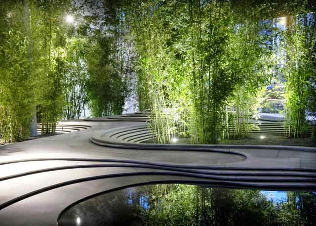 Tanaman Bambu untuk Taman Rumah Mewah