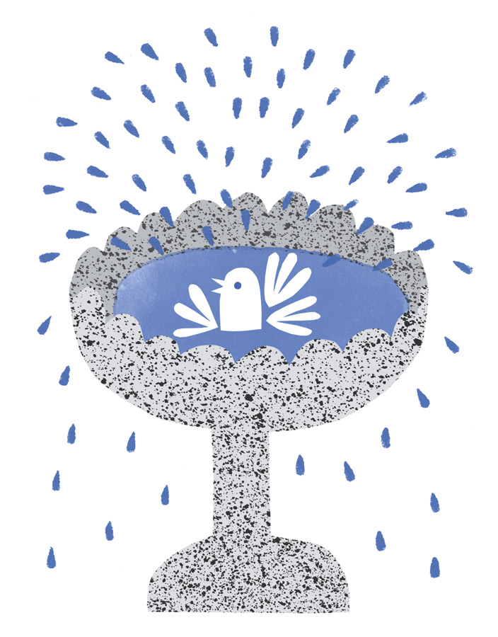 Edward Underwood's Illustration of exuberant bird splashing in bird bath for Lisa Jones Studio