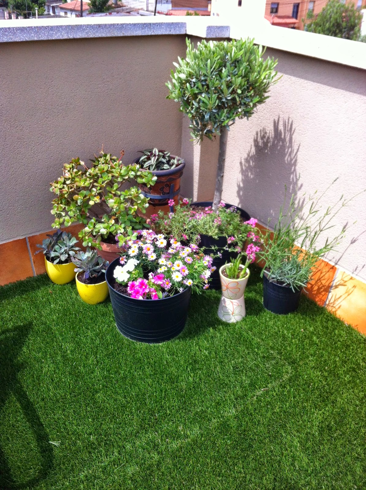 rincón relax con agrupación de plantas y cómodas hamacas