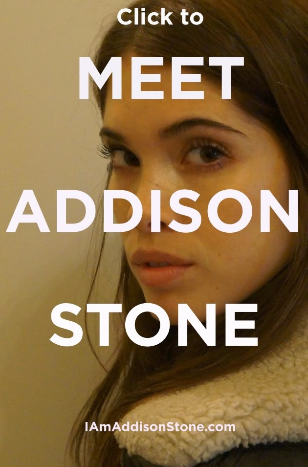 The Unfinished Life of Addison Stone
