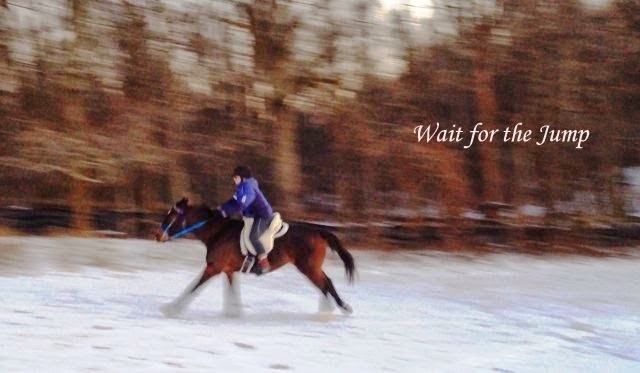 Equestrian Blog Of The Day - Wait For The Jump