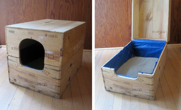 Как сделать лоток для котенка своими руками