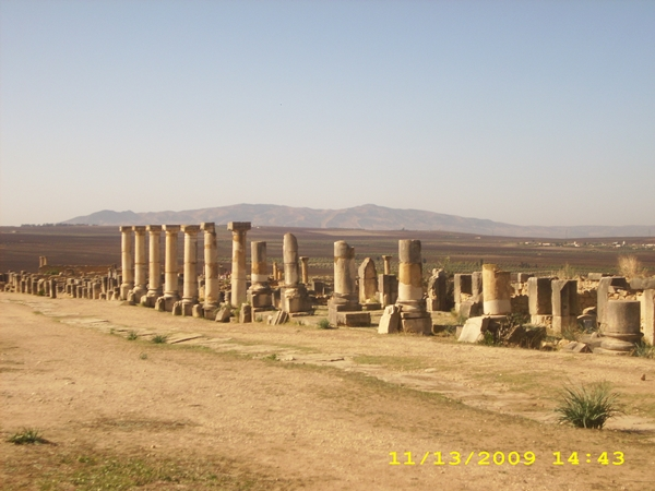volubilis-orasul-ruina-maroc