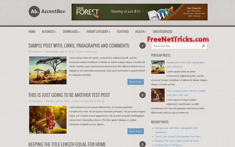 Best SEO Friendly Responsive Templates for Blog 2015