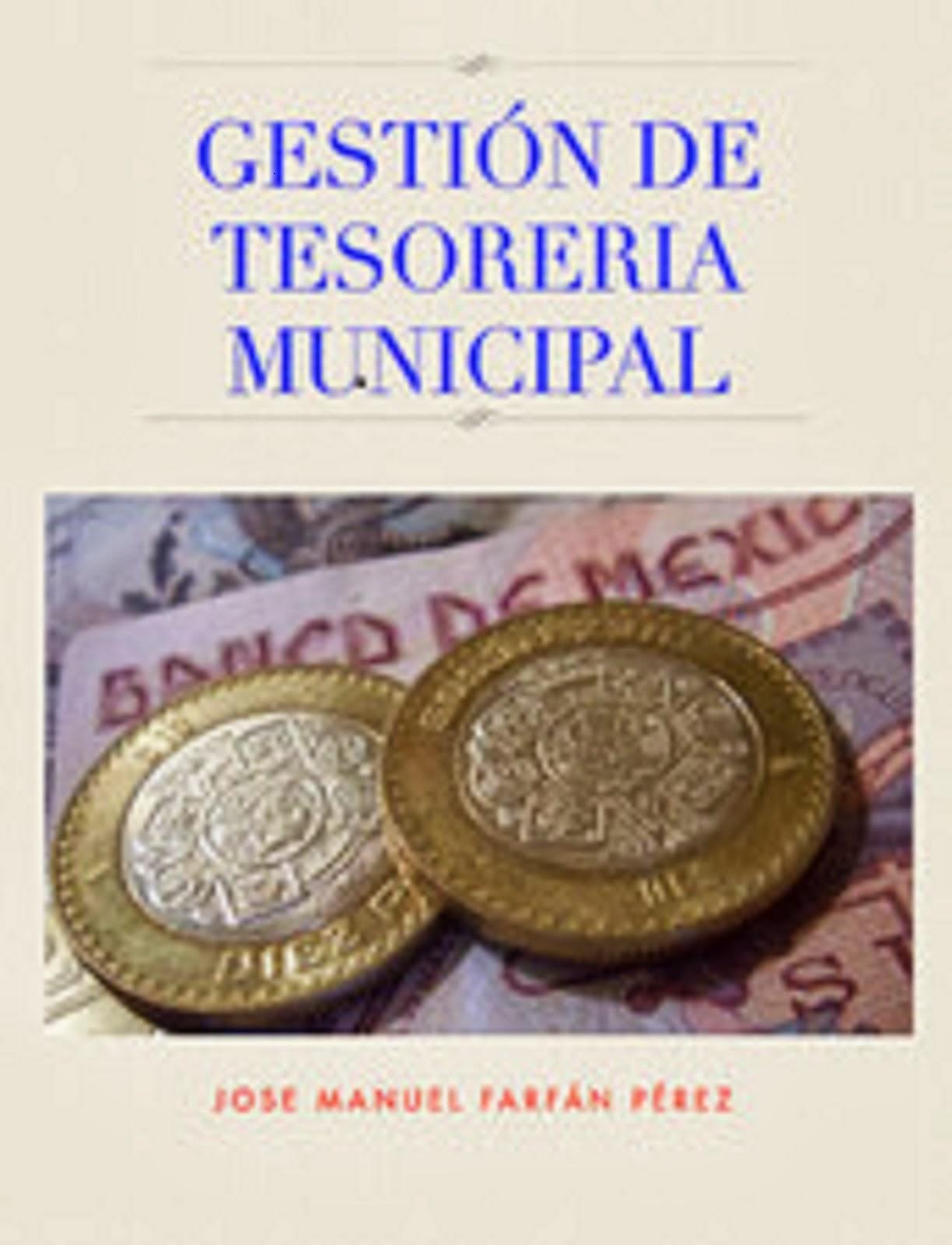 GESTIÓN DE TESORERÍA MUNICIPAL