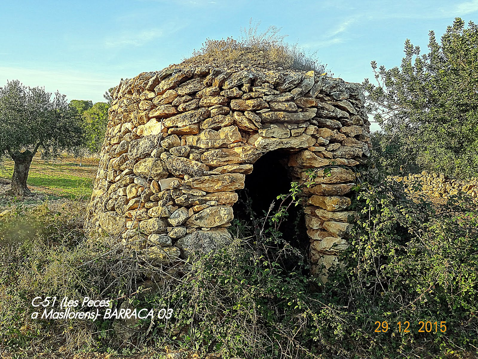 BARRACA DEL CAMP DE TARRAGONA