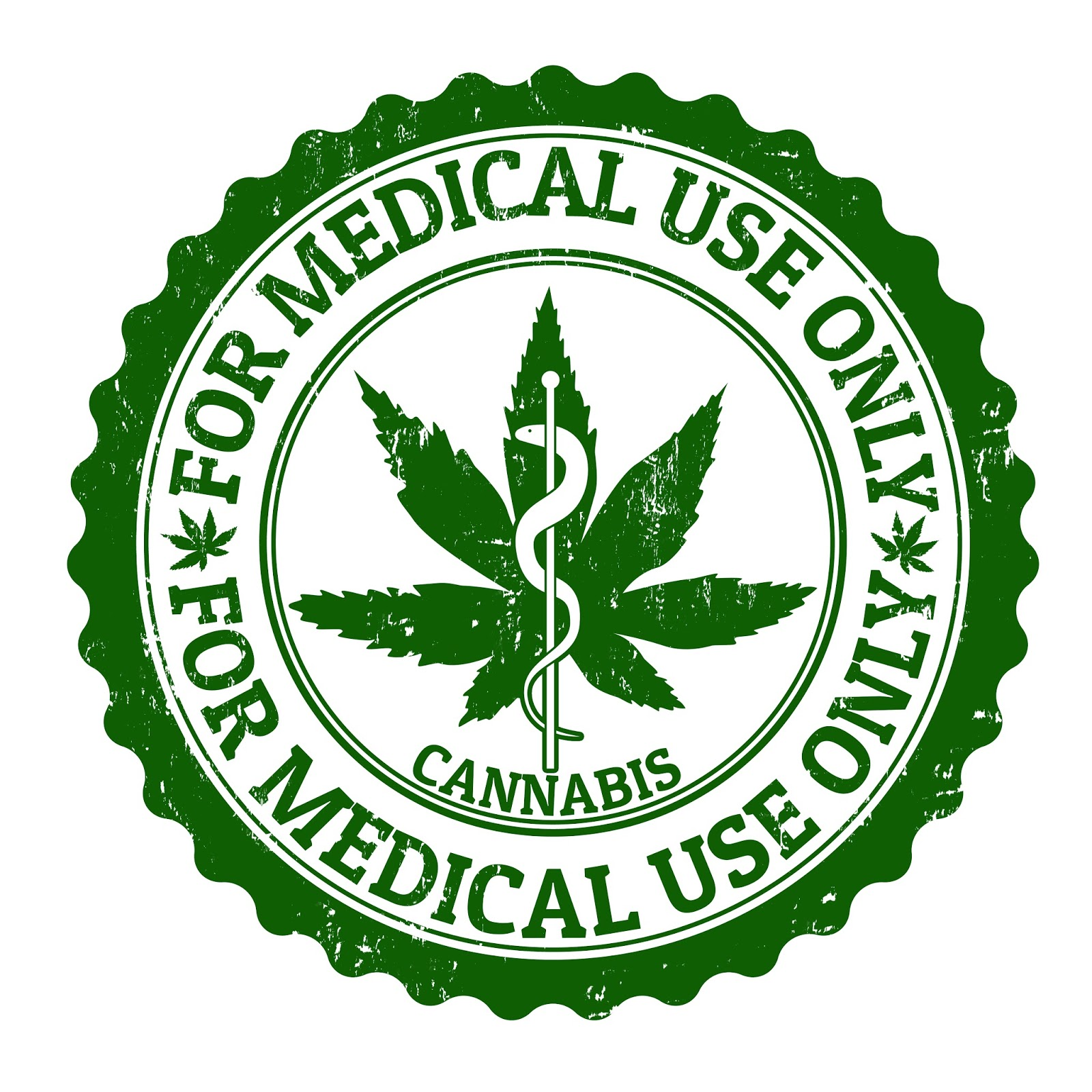 Michigan medical marijuana report weed 101 a beginners guide to if you are a new medical marijuana patient youve come to the right place this new column is going to explain the different options available for the 1betcityfo Images