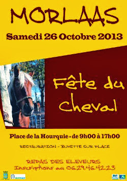la fête du cheval 2013 à Morlàas