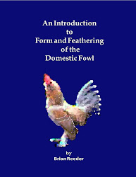 NOW AVAILABLE      'An Introduction to Form and Feathering of the Domestic Fowl'
