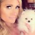Conoce al nuevo amor de Paris Hilton