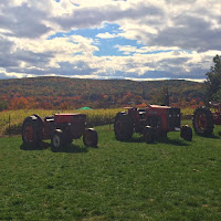 Tractor Display Fall Foliage Riverview Farms Glastonbury CT New England Fall Events