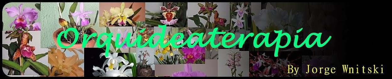 Orquideaterapia