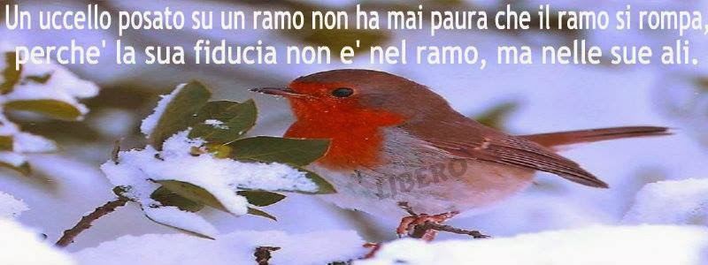Amato Gianna : il bene in noi: Fiducia FQ65