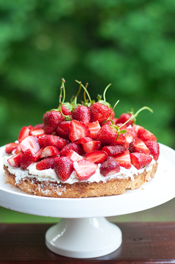 Summer Strawberry Almond Cake