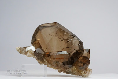 gwindel sur gangue composé de quartz fumé et qui a été trouvé par un cristallier dans les montagnes duMont-Blanc