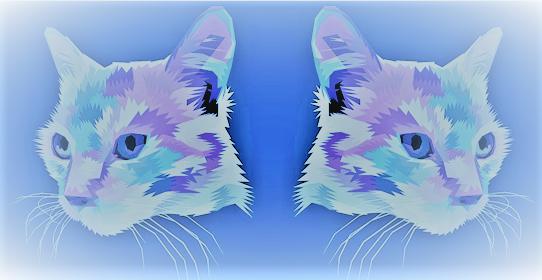 The Water Cats - The Hina Awaken