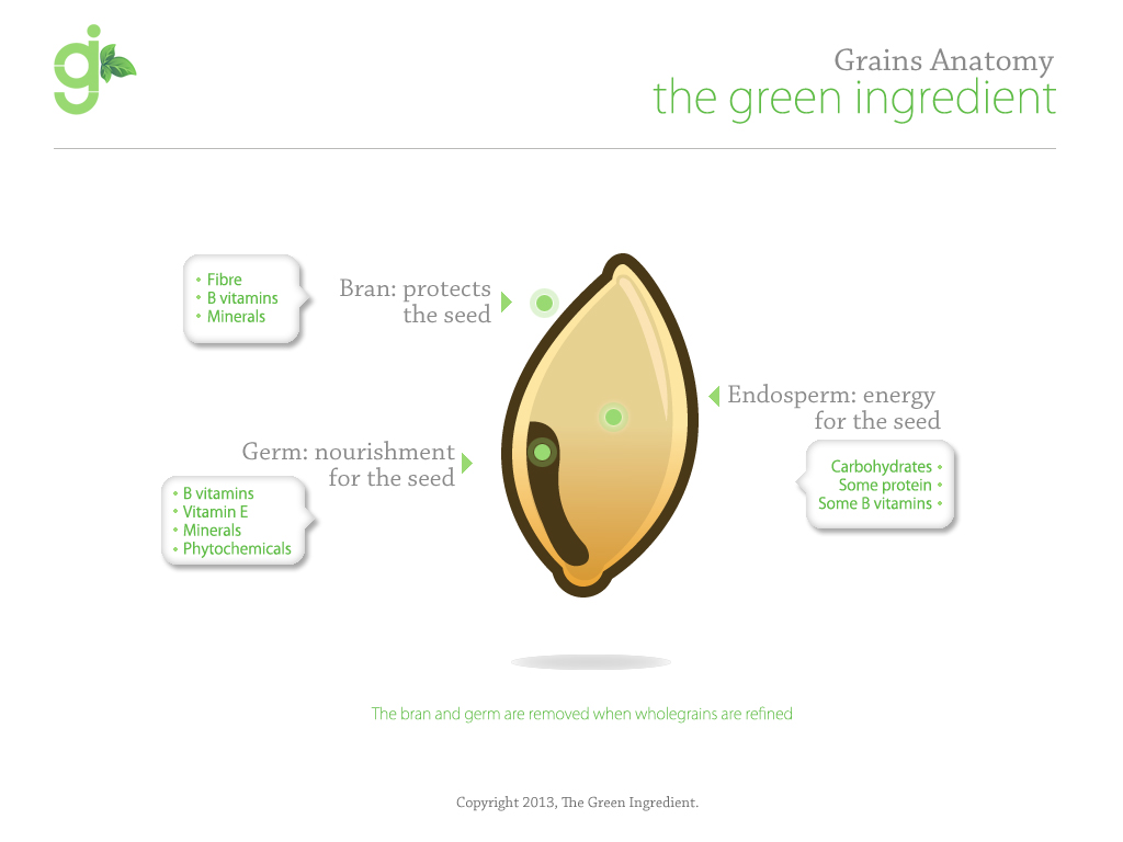 The Green Ingredient: Grains Anatomy