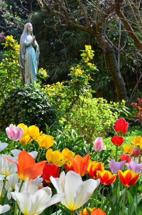 Que a mãe de Jesus nos abençoe e nos guarde - Amém!