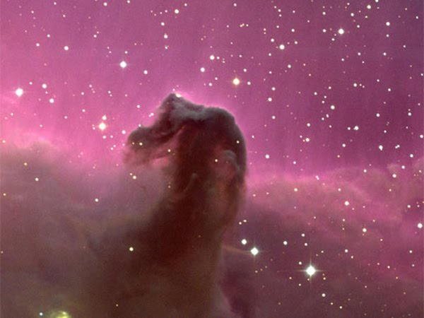 horse head nebula wallpaper. Horse Head Nebula