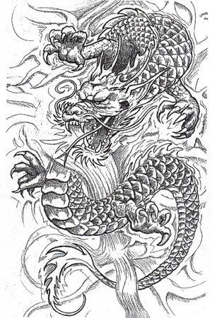 Dragon Tattoo on Dragon Tattoo Picture   Tattoo Ideas
