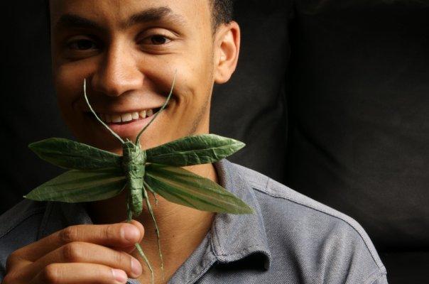 El arte del artista Sipho Mabona en origami
