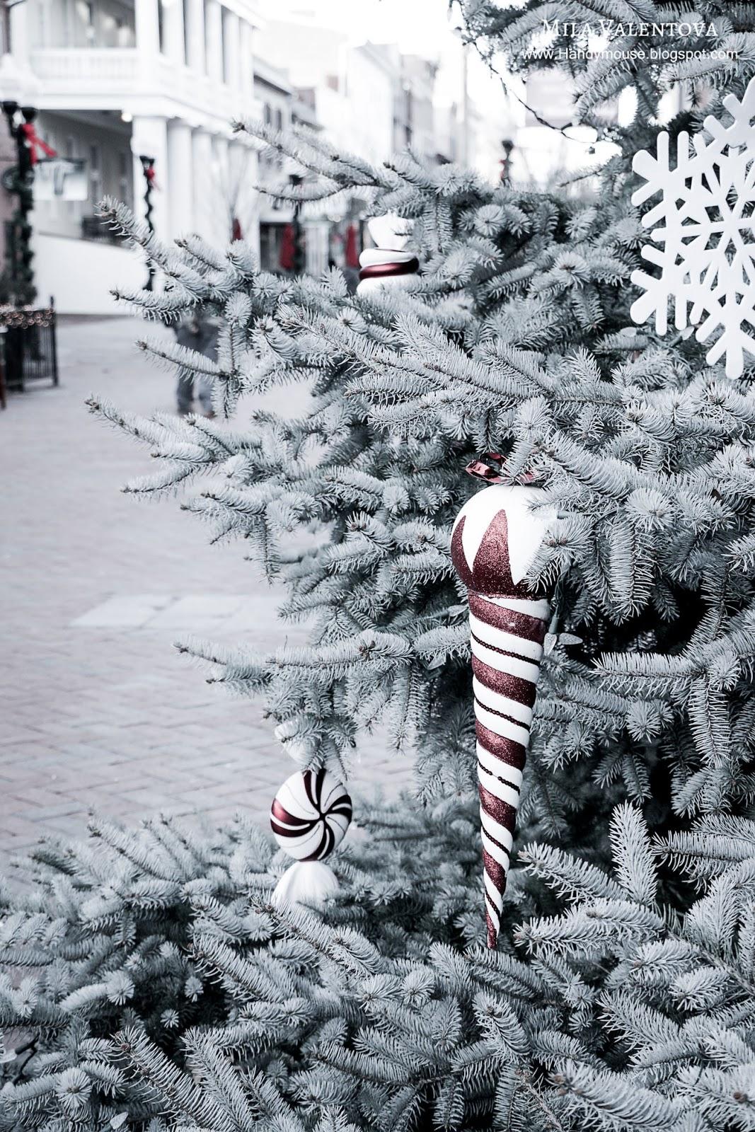 Фотография Новогодние игрушки на елке. Мила Валентова.