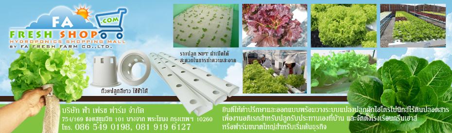 จำหน่ายแปลงปลูกผักไร้ดินปลอดสารไฮโดรโปนิกส์ รางปลูกและอุปกรณ์ Hydroponicsโทร086 549 0198